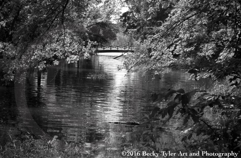minnehaha-creek-3