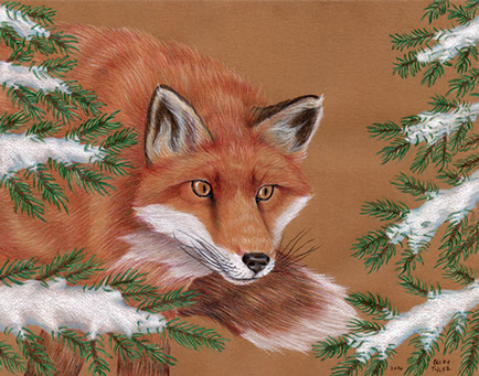 red-fox