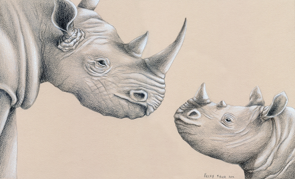 Rhino mom and child