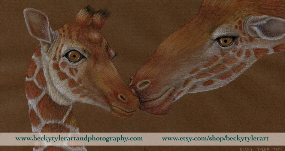 Reticulated Giraffe_Landscape