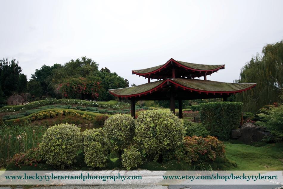 2013 Japanese Garden