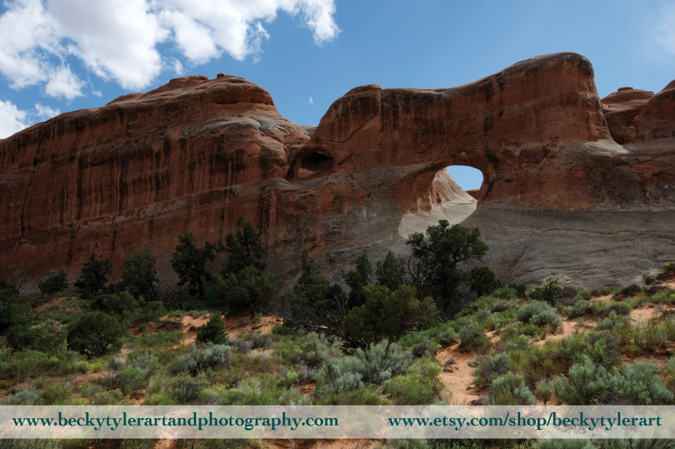 Arches National Park 8