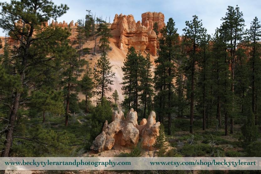 Bryce Canyon 4
