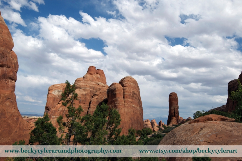 Arches National Park 10