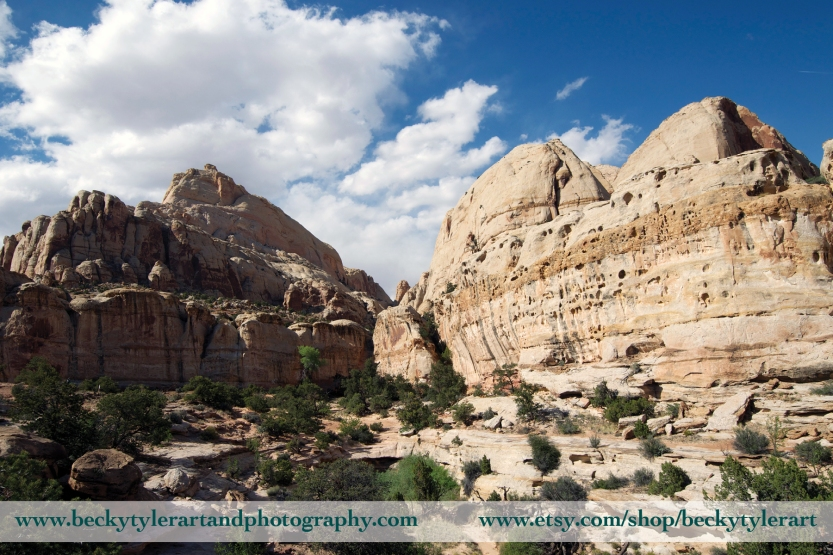 Capital Reef national Park 3