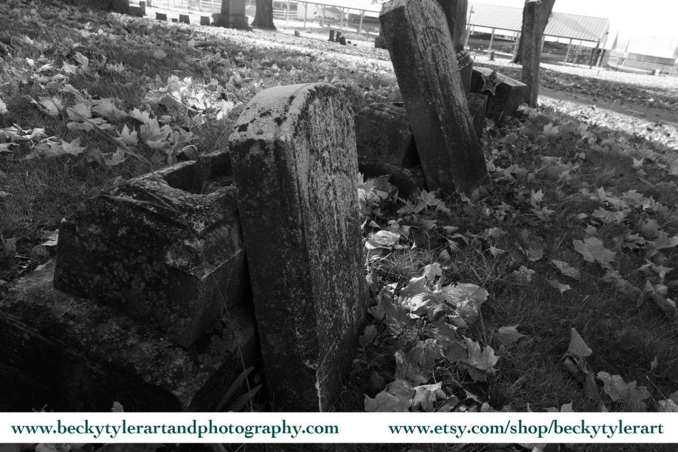 Maple Grove Cemetery_contrast