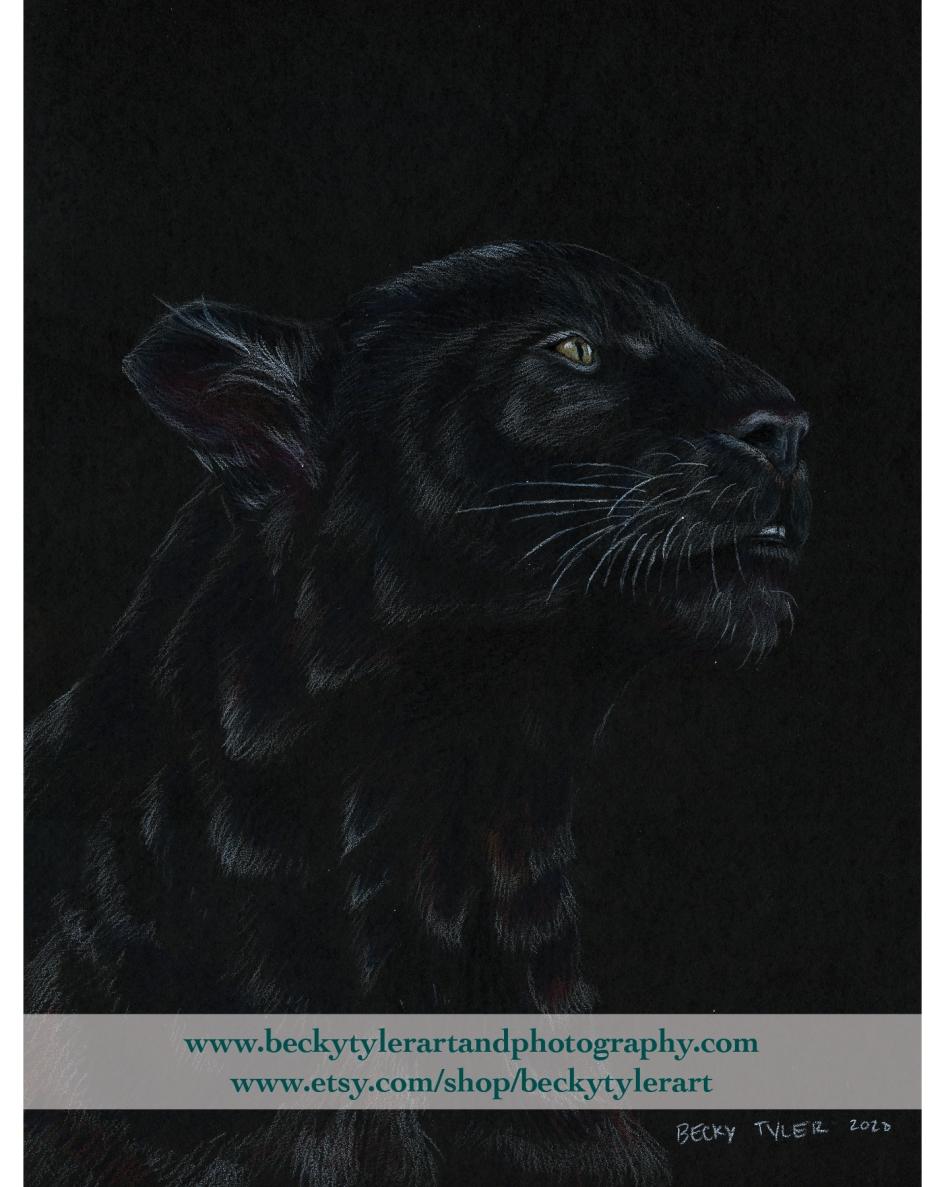 2020 Black Panther