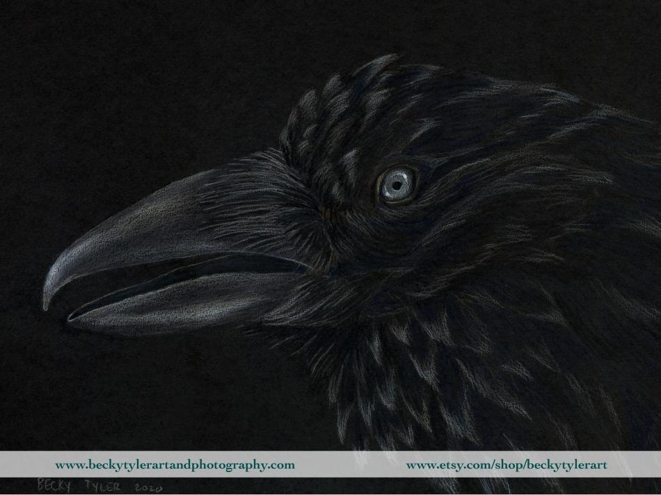 2020 Raven on black paper