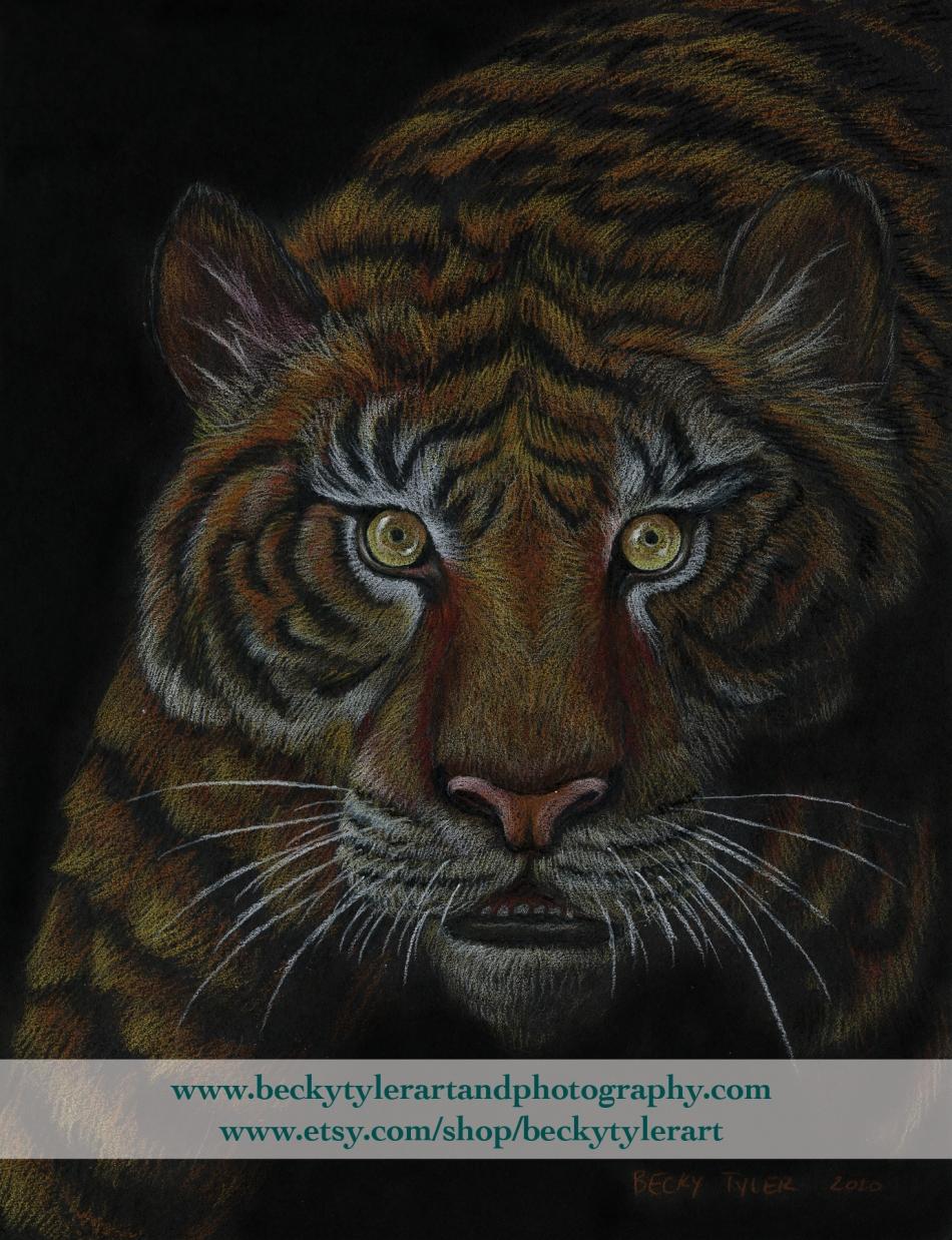 2020 Tiger_Black Paper