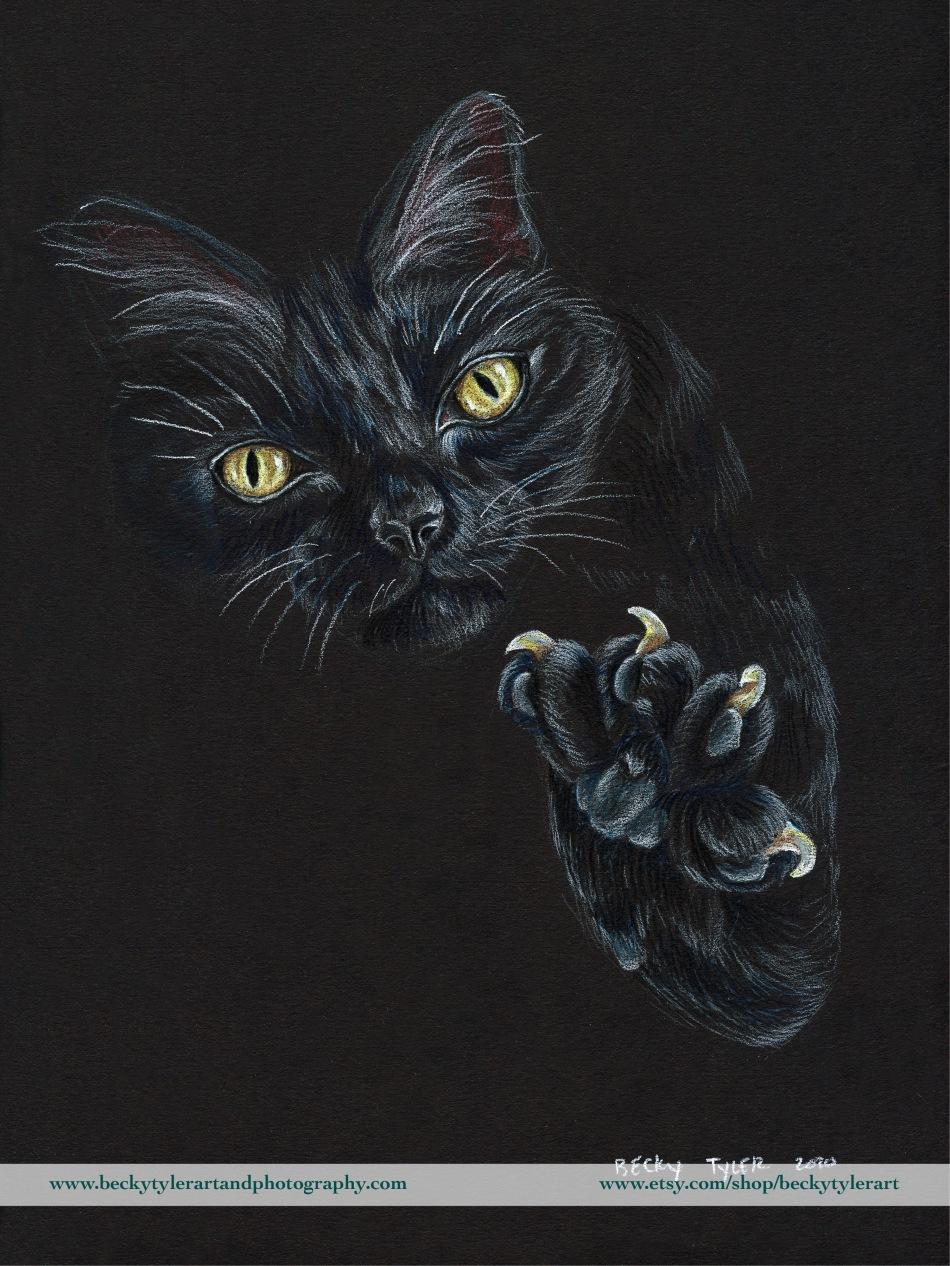 2020 9x12 Black Cat